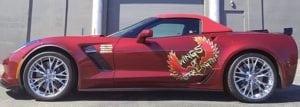 Alina Popa's Corvette